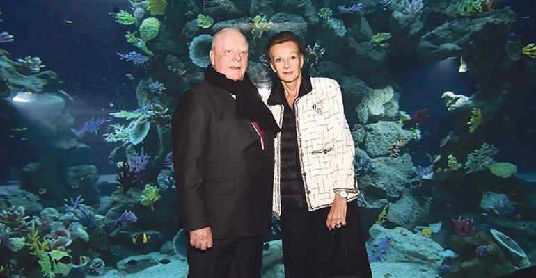 Poema del mar offenbart die sch nheit der unterwasserwelt for Aquarium poema del mar