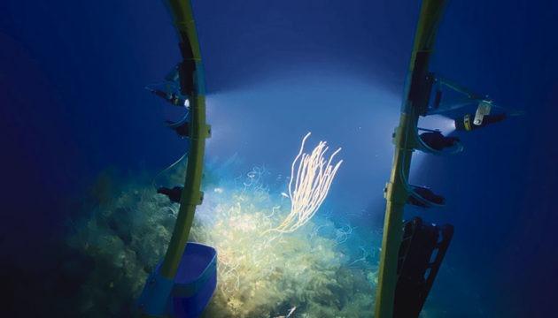 Blick aus dem Cockpit des U-Boots, in dem drei Insassen Platz finden  Fotos: EFE