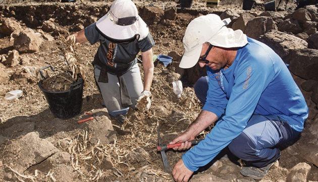 Die Archäologen der Grabungsgesellschaft Tibicena bei der Arbeit an der Fundstätte. Es werden in der Umgebung noch mindestens zwei weitere ähnliche Anlagen vermutet.  Fotos: Cabildo de Gran Canaria/EFE
