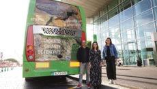 Eine Rieseneidechse ziert das Heck des Titsa-Busses.