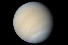 Der Planet Venus ist zurzeit am Nachthimmel zu sehen. Foto Cabildo de Tenerife