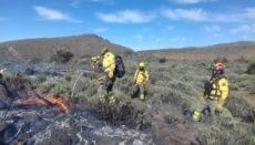 Mitarbeiter der Waldbrandbekämpfungseinheit des Cabildos beim Löschen eines Feuers im Teide-Nationalpark im Mai letzten Jahres. Foto: Cabildo de Tenerife