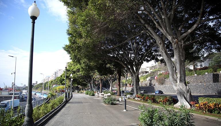 Die Avenida Anaga in Santa Cruz de Tenerife Foto: EFE