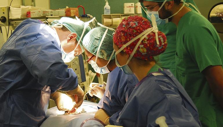 In den Krankenhäusern können wieder mehr Operationen stattfinden. Foto: Gobierno de canarias