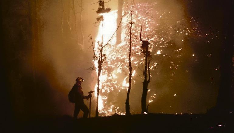 Ein Brandbekämpfer im Einsatz auf La Palma Foto: EFE