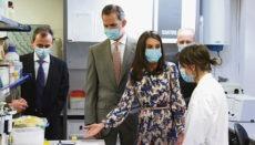 Das spanische Königspaar zeigt Präsenz in der Krise, besucht öffentliche Einrichtungen, Krankenhäuser und hält Videokonferenzen mit von der Krise in besonderer Weise betroffenen Sektoren der Wirtschaft und des gesellschaftlichen Lebens ab. Das Bild zeigt König Felipe und Königin Letizia beim Besuch des Naturwissenschaftlichen Nationalmuseums in Madrid am 15. Juni 2020. Foto: EFE