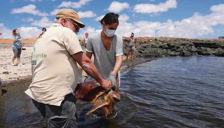 Freilassung und Küstensäuberung fand in Puerto Lajas (Puerto del Rosario) statt. Foto: EFE