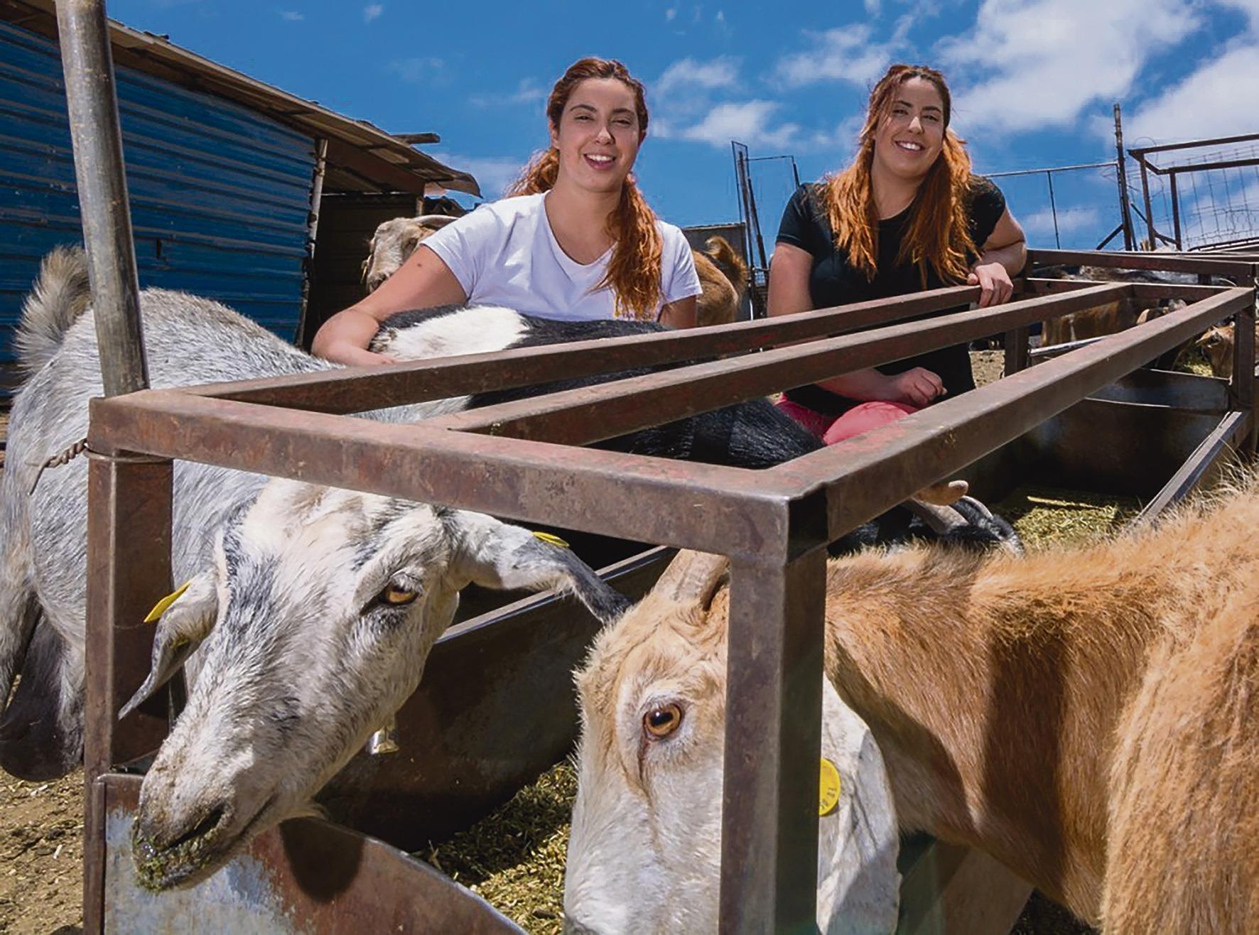 Beatriz und Natalia Mayor auf ihrem Hof. Für die Käsemanufaktur halten sie mehr als 400 Tiere. Foto: cabildo de gran canaria/quesos naroy