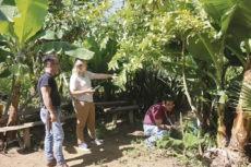 Der Inselrat für Landwirtschaft, José Adrián Hernández Montoya, und seine Kollegin aus der Kanarenregierung, Alicia Vanoostende, auf der Ecofinca Plátanológica Foto: Cabildo de La Palma