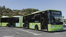 Einer der neuen Busse der Titsa-Flotte Foto: ayto sc