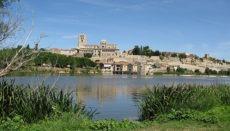 Blick über den Duero auf die Stadt Zamora und ihre Kathedrale Foto: pixabay