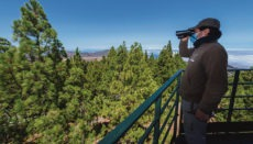 Von sechs strategisch positionierten Beobachtungstürmen und Aussichtspunkten aus halten in der Waldbrand-gefährlichen Zeit rund um die Uhr 30 Mitarbeiter des Präventionsteams Ausschau nach Anzeichen für neu entstehende Brandherde. Fotos: Cabildo de Gran Canaria