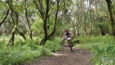 Mountainbiker auf El Hierro Foto: EFE