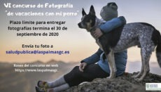 """Letzter Abgabetermin für den Fotowettbewerb """"Ferien mit meinem Hund"""", zu dem die Einwohner von Las Palmas aufgerufen sind, ist der 30. September 2020. Foto: Ayuntamiento Las Palmas"""