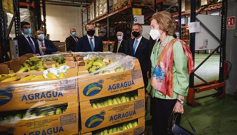 Dieser Tage besuchte Königin Sofía eine Lebensmittelbank auf Gran Canaria. Foto:: EFE