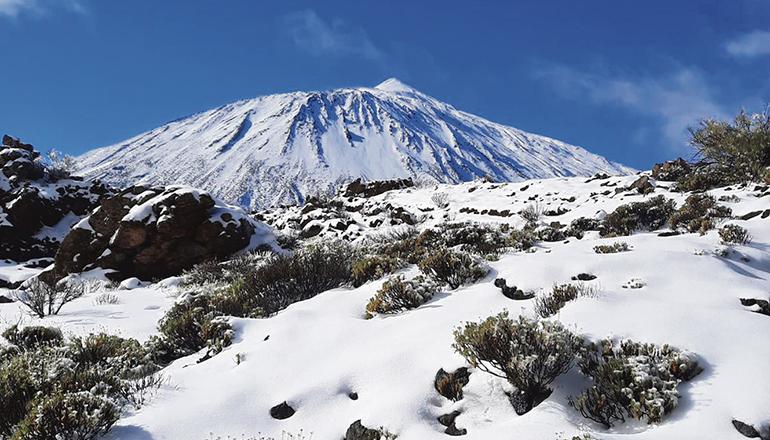 So viel Schnee wie diesen Januar fiel in den letzten Jahren selten. Foto: noticia