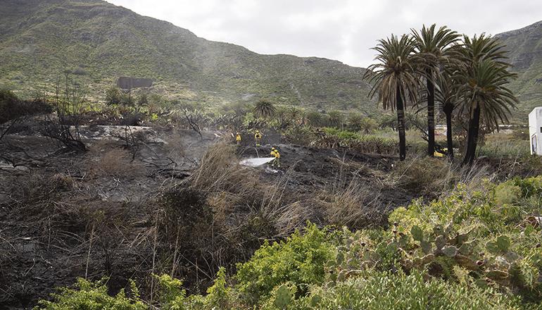 Mitarbeiter der Brandschutzeinheit Brifor bei den Löscharbeiten Foto: Cabildo de Tenerife