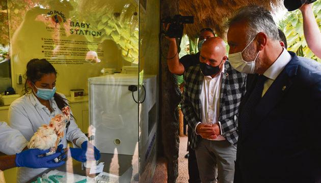 Der prominenteste Besucher war in den ersten Tagen Ángel Víctor Torres. Der kanarische Regierungspräsident besuchte zusammen mit dem regionalen Umweltminister den Park. Wolfgang Kiessling, der sich durch diese Geste geehrt fühlte, und sein Sohn Christoph führten den Regierungschef durch die Anlage. Fotos: Moisés Pérez