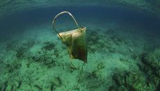 Neue Verschmutzungsquelle: Nicht korrekt entsorgte Masken landen leicht im Meer.