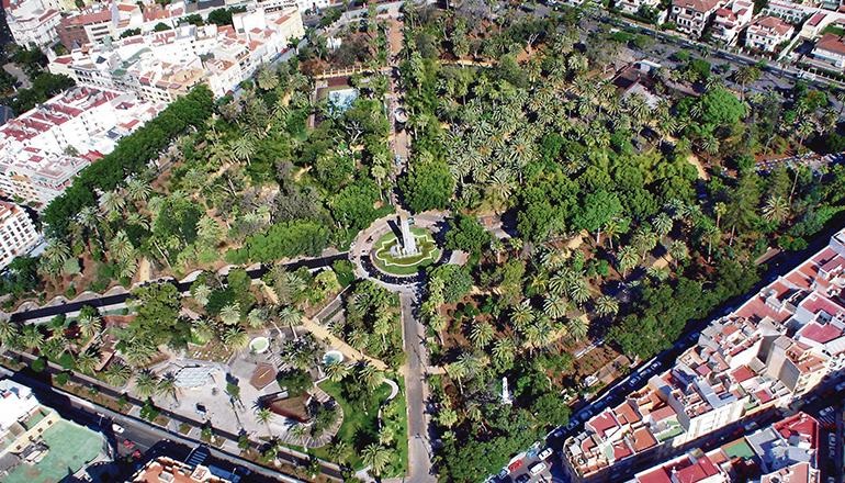 Der Parque García Sanabria ist einer von 29 Stadtparks in Santa Cruz de Tenerife. Foto: Moisés Pérez Pérez