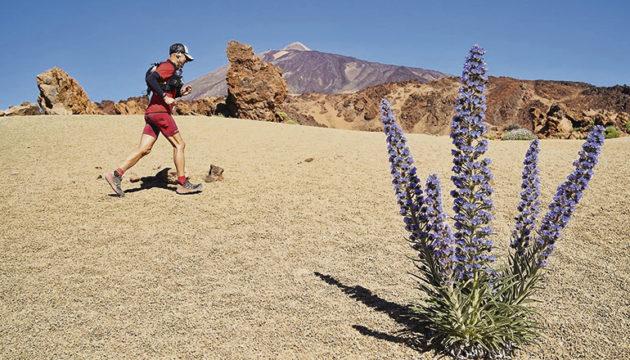 Die Strecke des Trails und Ultratrails führt durch den Nationalpark und bis auf 2.555 m Fotos: cabildo de Tenerife