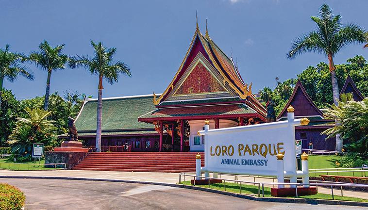 Loro Parque, Puerto de la Cruz Foto: Moisés Pérez / Siam Park