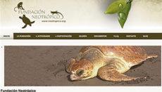 Die Website der Stiftung Neotrópico ist unter www.neotropico.org zu finden. Foto: Fundación Neotrópico