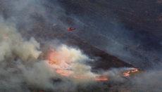 Löscharbeiten am 13. September in Sierra Bermeja. Das Feuer wütete tagelang; erst durch den Regen am 14. September konnte der Brand unter Kontrolle gebracht werden. Foto: efe