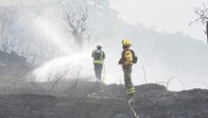 Die Flammen wurden am Boden und aus der Luft von rund 200 Einsatzkräften bekämpft. Foto: Moisés Pérez